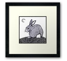 Cotton Tail Framed Print