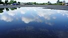 Reflecting Puddle 2 by Jessica Liatys