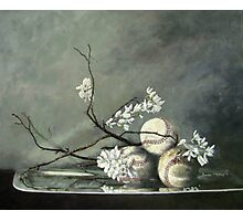Baseballs and Spring Blossoms Photographic Print