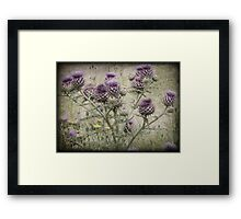 In a Thistle Field Framed Print
