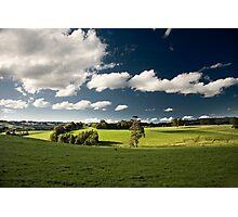 Saturday Greenery Photographic Print