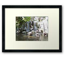 Elephant Splash Party Framed Print