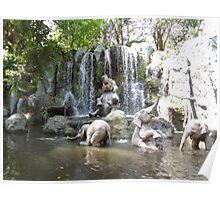 Elephant Splash Party Poster