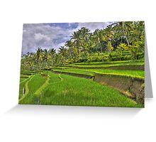 Gunung Kawi Rice Paddies Greeting Card