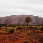 Uluru in the wet by DashTravels