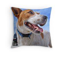 Australian Cattle Dog On Beach Throw Pillow