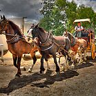 The Coach Ride 2 - Sovereignhill Ballarat by Hans Kawitzki