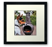 Cool winter days by the fire Framed Print
