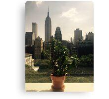 NYC Window Sill Canvas Print