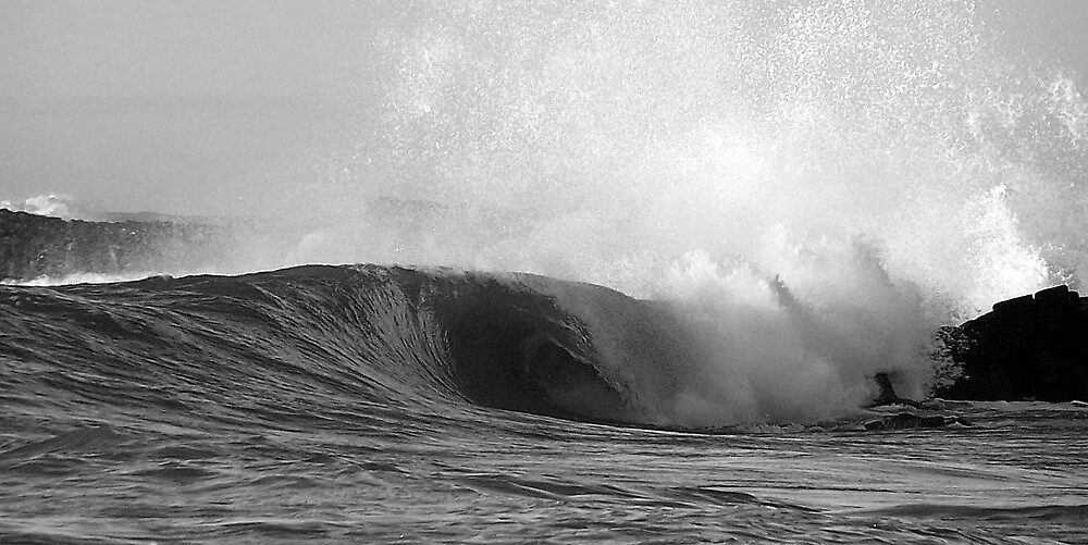 B/W D River Barrels by Kyle  Rodgers