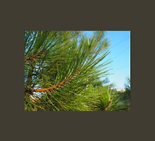 Side view of a pine branch with long needles closeup Unisex T-Shirt