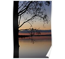 Branched Sunset Poster