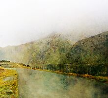 Along the Foggy Road by Margi