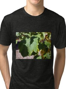 Green leaves close-up that begin to turn yellow Tri-blend T-Shirt