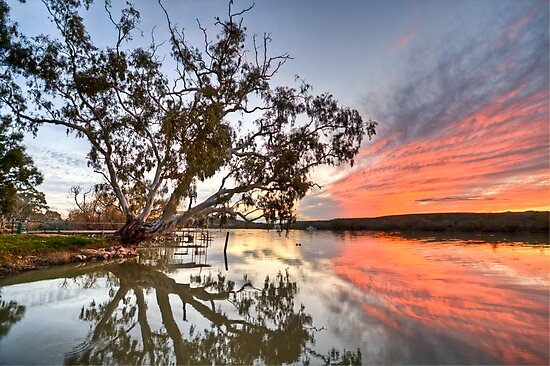 River Red by Dave  Hartley
