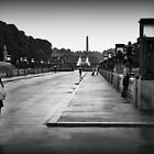 Vigeland Park in the rain by Astrid Ewing Photography