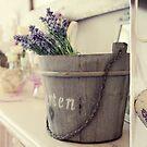 Lavender... by smilyjay