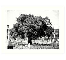 The Guardian Tree Art Print