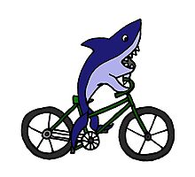 Funny Blue Shark Riding Bicycle Photographic Print