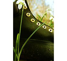 Boot In The Undergrowth Photographic Print