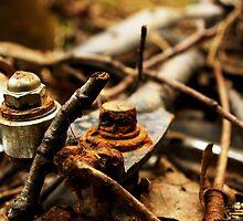 Rusty Bike Nuts by astrawally