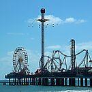 Flyin' High at Pleasure Pier, Galveston, Texas by Karen L Ramsey