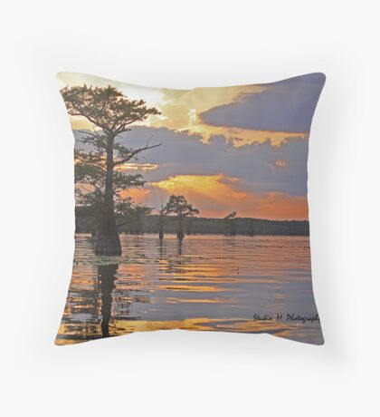 The Perfect Ending Throw Pillow