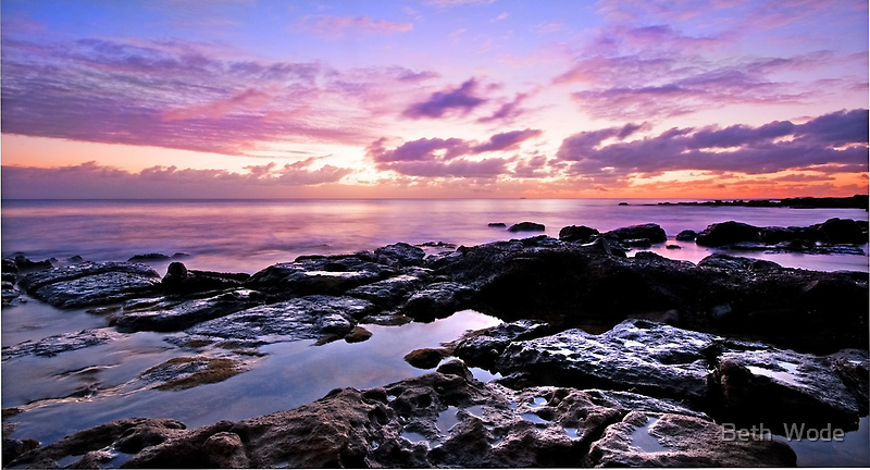 Sunshine on the Rocks - Maroochydore Qld by Beth  Wode