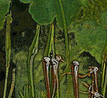 Dandelion Design 2 by Lenore Senior