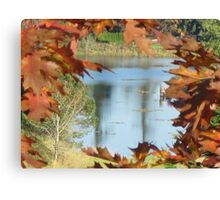 Autumn in Western Washington Canvas Print