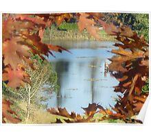 Autumn in Western Washington Poster
