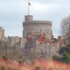 Windsor Castle by Chris Day