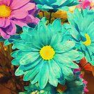 Rainbow of flowers © by Dawn M. Becker