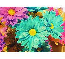 Rainbow of flowers © Photographic Print
