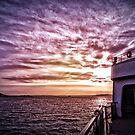 Ferry From Bainbridge by Danielle Cardenas