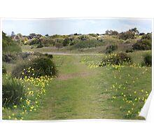 Fleurio Peninsula, South Australia Poster