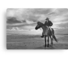 hunts beach, south westland, nz Metal Print