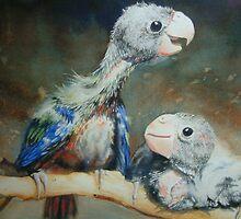 Baby Lorikeets by Natasha Hodgson