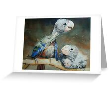 Baby Lorikeets Greeting Card