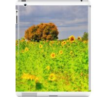 Rigby Idaho - Dreaming Of Sunflowers iPad Case/Skin