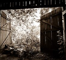Barn Doors by petitejardim