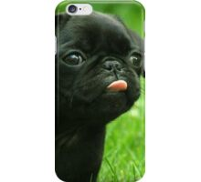 Black Pug iPhone Case/Skin