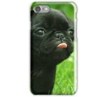 Black Pug iPhone Case/Skin