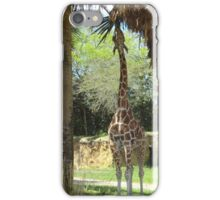 Lunchtime at Animal Kingdom Lodge iPhone Case/Skin