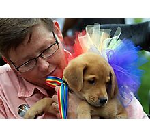Pride Puppy Photographic Print