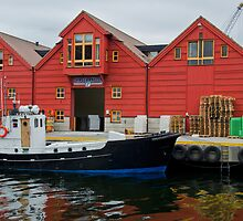Fish Depot, Kristiansand, Norway by Gerda Grice