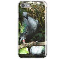 Bird Has Attitude iPhone Case/Skin