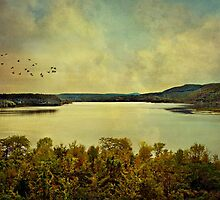 Lake George, Ft. Ticonderoga, NY by Scott Mitchell