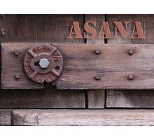Rustic Asana Photographic Print