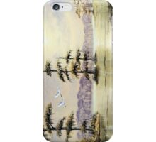 Egrets Over Wakulla River Florida iPhone Case/Skin